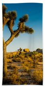 Joshua Tree Panoramic Beach Towel