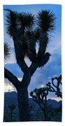Joshua Tree Sunset Skies Beach Towel