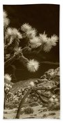 Joshua Trees And Boulders In Infrared Sepia Tone Beach Towel
