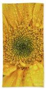 Joyful Color Nature Photograph Beach Towel