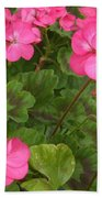 Joyful Geranium  Beach Towel
