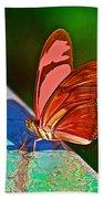 Julia Heliconian Butterfly In Iguazu Falls National Park-brazil Beach Towel