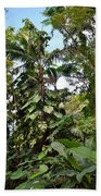 Jungle Harmony Beach Towel