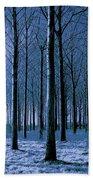 Jungle Trees In Blue  Beach Towel