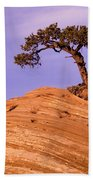 Juniper On Sandstone Beach Towel
