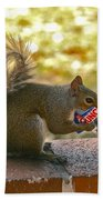 Junk Food Squirrel Beach Towel