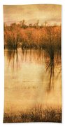 Just After Dawn Beach Towel