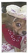 Just Because She Is A Chihuahua Beach Towel