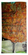 Just Before Fall Beach Towel