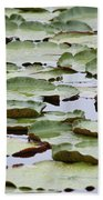 Just Lily Pads Beach Towel