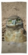 Juvenile Burrowing Owl-img_164817 Beach Towel