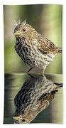 Juvenile House Sparrow 0689 Beach Towel