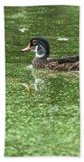 Juvenile Male Wood Duck Beach Towel