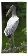 Juvenile Wood Stork Beach Towel