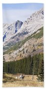 K-country And Bighorn Sheep Beach Towel