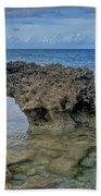 Kaena Point  7868 Beach Towel