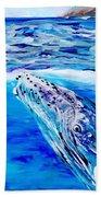Kauai Humpback Whale Beach Towel