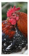 Kauai Rooster Beach Towel