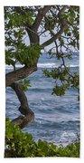 Kauai Shores Beach Towel