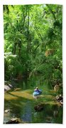 Kayaking In Tropical Paradise Beach Towel