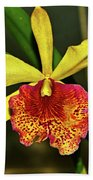Keowee Newberry Orchid 001 Beach Towel