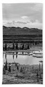 Kettle Pond And The Alaska Range Beach Towel