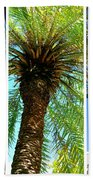 Key West Palm Triplets Beach Towel by Susanne Van Hulst