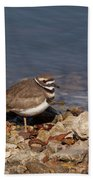 Kildeer On The Rocks Beach Towel