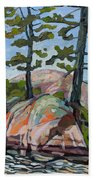 Killarney Point- The Phlip Side Beach Towel