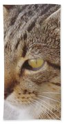King Cat Beach Towel
