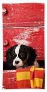 King Charles Cavalier Puppy  Beach Towel
