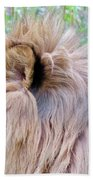 King Of The Jungle Profile  Beach Towel