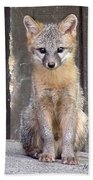 Kit Fox15 Beach Towel