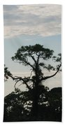 Kite In The Tree Beach Towel