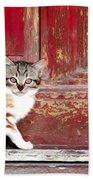 Kitten By Red Door Beach Towel