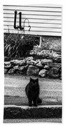 Kitty Across The Street Black And White Beach Towel