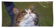 Kitty And The Dragonfly Close-up Beach Towel