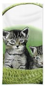 Kitty Caddy Beach Towel