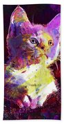 Kitty Cat Kitten Pet Animal Cute  Beach Towel