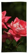 Knockout Roses Beach Towel