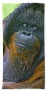 Knowing Smile Beach Towel