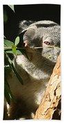 Koala Bear 3 Beach Towel
