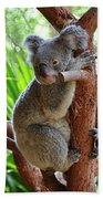 Koala Mama Beach Towel