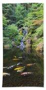Koi Fish In Waterfall Pond At Japanese Garden Beach Towel