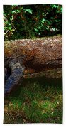 Komodo Beach Towel