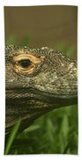 Komodo Dragon Beach Towel