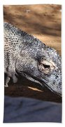 Komodo Kountry Beach Towel