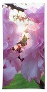 Kwanzan Cherry Blossoms Beach Towel