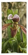 Lady Slipper 2 Beach Towel