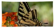 Ladybug And Tigertail Beach Towel